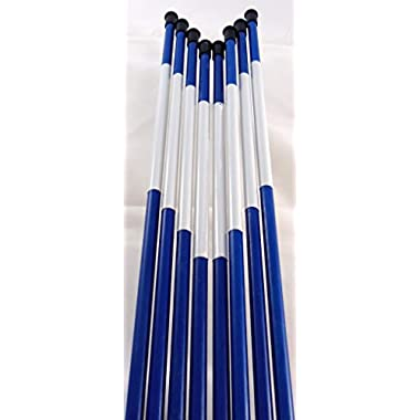 Driveway Marker, Snow Stakes, Plow Stakes, Reflective Tape, 5/16  Diameter x 48 , Fiberglass, Blue, 50 Pack