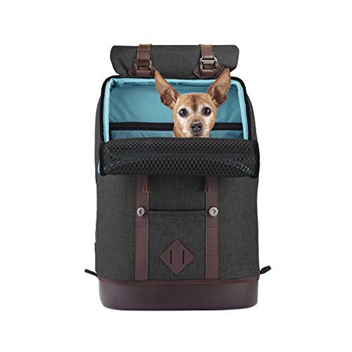 Kurgo Dog Carrier Backpack for Small Pets - Dogs & Cats | TSA Airline Approved | Cat | Hiking or Travel | Waterproof Bottom | G-Train | K9 Ruck Sack | Black (Heather Black) (ZCR30-17171)