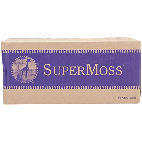 Super Moss 21773 Reindeer Moss Preserved, Chartreuse, 3 Pounds