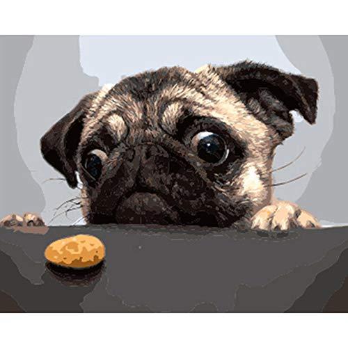 Doe-het-zelf olieverfschilderij hondenvoer digitaal voorgedrukt canvas-olieschilderij voor volwassenen kinderen beginners schilderen op nummer-kits, 40x50 cm, zonder lijst