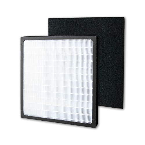 HEPA Filter Carbon Filter Replacement for Idylis AC-2118, AC-2123, IAP-10-280, 1AP10280, Part# IAF-H-100D,1 Idylis Type D Hepa Filter & 2 Carbon Pre-Filter