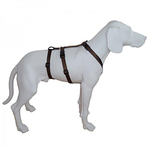 Feltmann NoExit Hundegeschirr® - ausbruchssicher, Panikgeschirr, Unifarben braun, Bauchumfang 50-65 cm, 20 mm Bandbreite