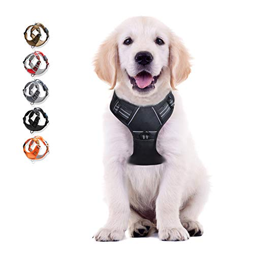 WALKTOFINE Dog Harness No Pull Reflective, Comfortable Harness with Handle,Fully Adjustable Pet Leash Vest for Small Medium Dogs Black S