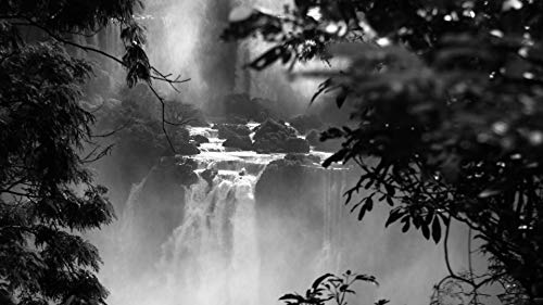 Rompecabezas 1000 Piezas Adultos De Madera Niño Puzzle Cataratas Del Iguazú Juego Casual De Arte Diy Juguetes Regalo Interesantes Amigo Familiar Adecuado