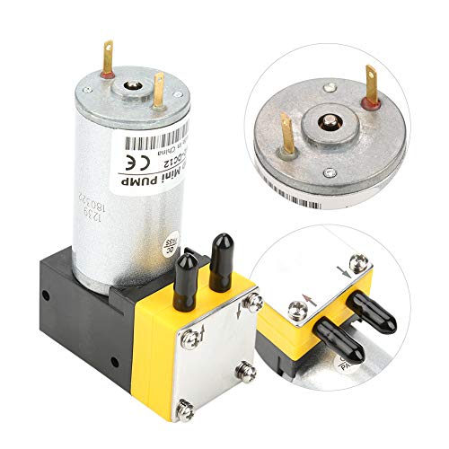 Jacksking Bomba de Agua de diafragma, 12V 0.4-1L/min Motor eléctrico de CC...