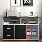 Tribesigns File Cabinet, 2 Drawer Storage Printer Stand, Mobile Lateral Filing Cabinet with Locks and Wheels,...