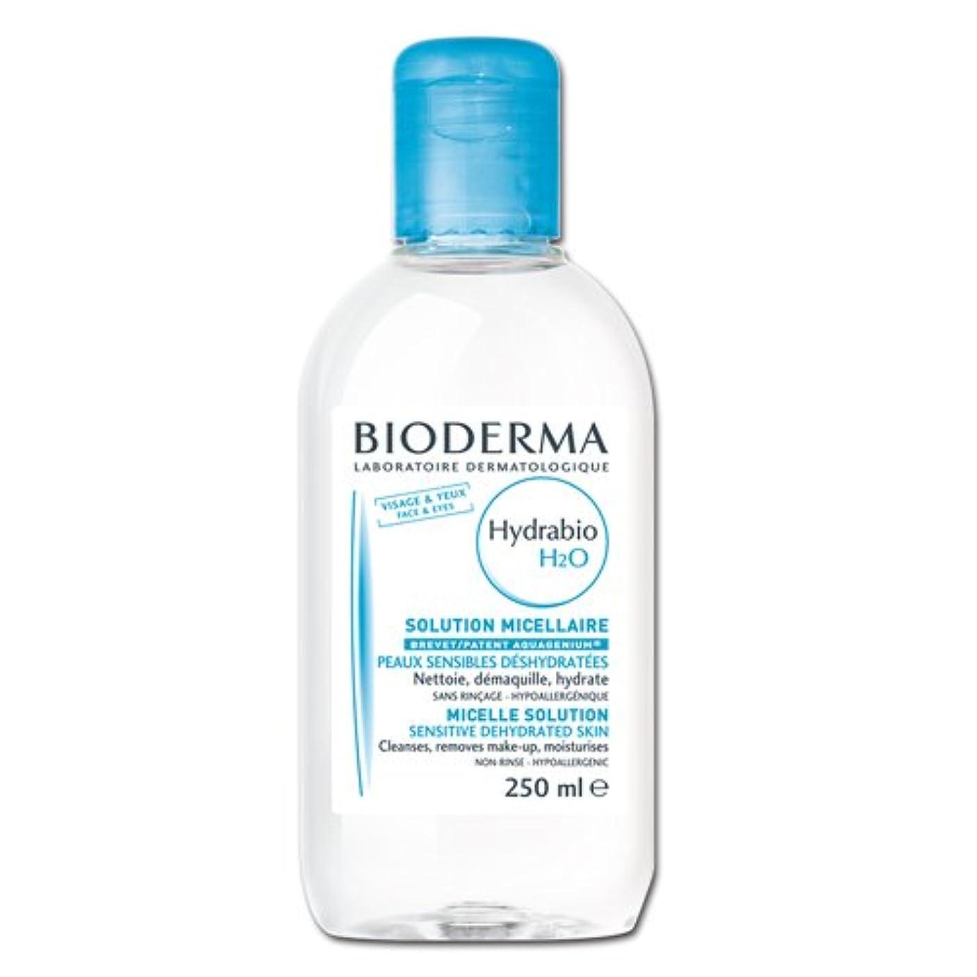 ベーシック敬な移住するBioderma ビオデルマ イドラビオ エイチツーオー D (H2O) 250ml [並行輸入品]