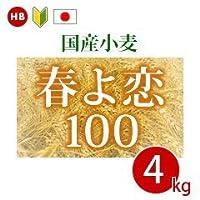 【北海道産強力粉】パリッともっちり香り豊かな春よ恋100% 4kg