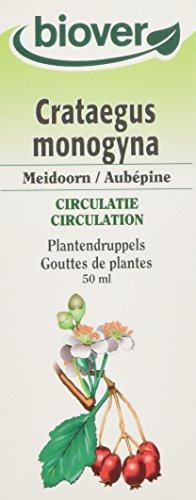 Biover Crataegus Monogyna Aubépine bio