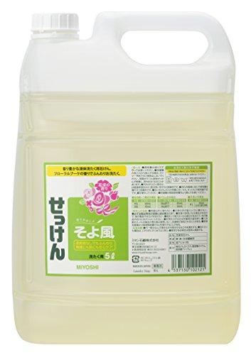 Japan Health and Personal Care - Liquid soap breeze 5L *AF27*