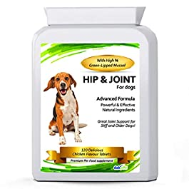 DakPets Advanced Hip and Joint Support Glucosamine for Dogs – Powerful Chondroitin, MSM, Curcumin & Green Lipped Mussel Dog Joint Supplement – with Vitamins E & C, made in UK