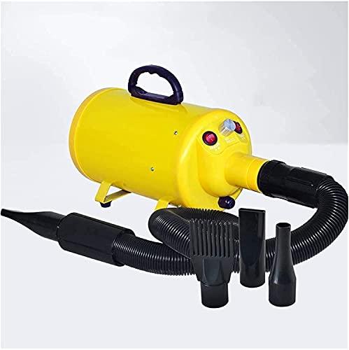 Bktmen Secador de Pelo Mascota de Alta Potencia Mute MUDE Perros Libres Y Gatos Especiales DE SECUSO DE SECUSO (Color : Yellow)