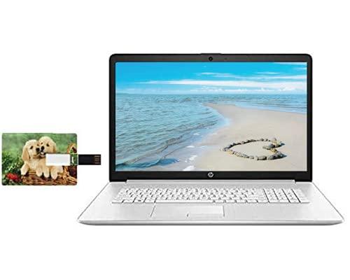 "2020 Newest HP 17.3"" FHD Laptop for Business and Student, 10th Gen Intel Quad-Core i5-10210U 12GB RAM 1TB HDD DVD Writer, Backlit Keyboard, Win 10 Pro | 32GB Tela USB Card"