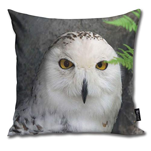 Harry Potter Owl Images Pattern Pillow-Home Decor Pillow Cover Bedroom Decorative Cushion Case For Living Sofas Square Pillow