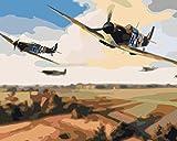 HAO Bricolaje Pintura al óleo Manualidades Pintura Graphy por número acrílico Modular Pintura al óleo decoración de la Pared-Aviones de la Segunda Guerra Mundial 40x50cm Sin Marco