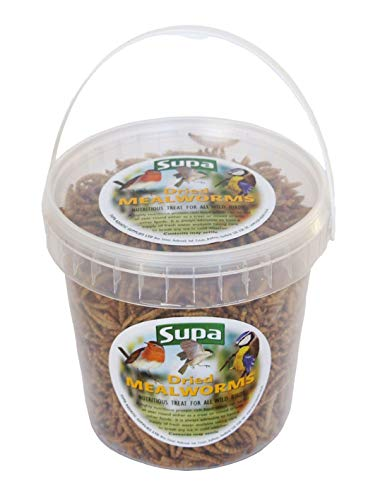 Supa Dried Mealworms for Wild Birds, 1 Litre Bucket | High Energy Protein Rich Treat For Garden Birds | Attract More Birds To Your Garden | Quality Wild Bird Food, transparent