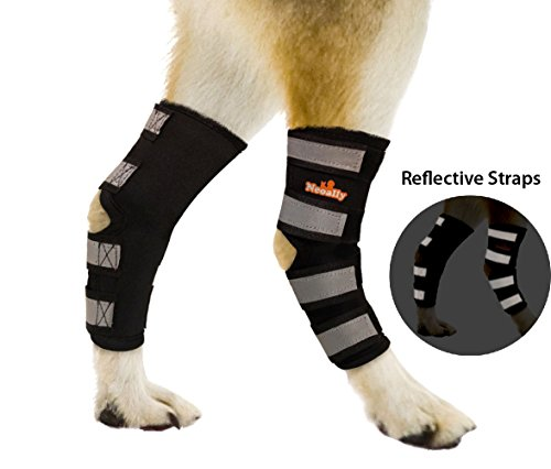 NeoAlly Pair Dog Rear Leg Brace Canine Rear Hock Joint Support with Safety Reflective Straps for...