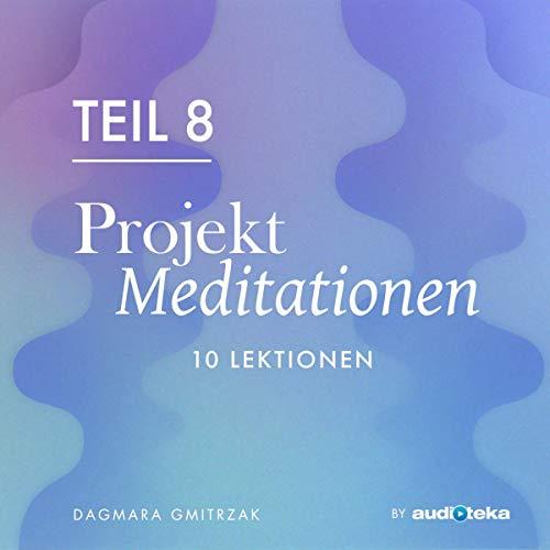 『Projekt Meditationen 8』のカバーアート