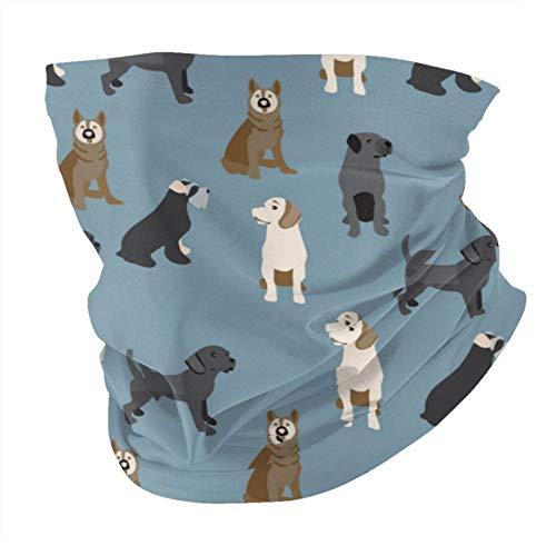 ZVEZVI Bandana patrón de máscara facial con perros colorido a prueba de polvo a prueba de viento variedad pañuelo para la cabeza pasamontañas para mujeres hombres