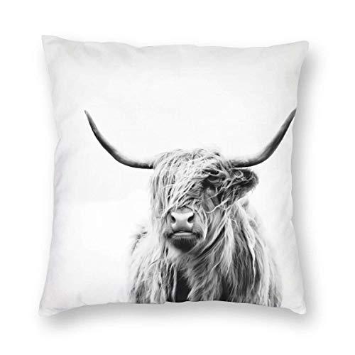 okstore1988 Funda de almohada decorativa de vaca con diseño de retrato de una vaca de las tierras altas, fundas de cojín cuadradas, estándar, 45,7 x 45,7 cm, decoración para sofá, dormitorio, coche