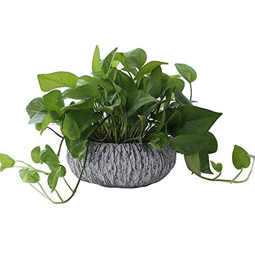Rishx Moda Gres pianta idroponica Container Vaso Tondo carnoso Flower Pot Sleeping Lotus Vaso da Fiori Imitazione di Pietra a Base di Carne di Fiori Desktop Crafts Decorative (Color : Gray)
