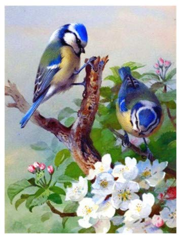 LILIANG Diy 5D Pushpin Painting Cross Stitch Kits Animal Bird Mosaic Handmade Embroidery Home Decor Gifts (Color : Black border, Size : 24 in)