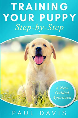 Training your puppy step-by-step: A how-to guide to early