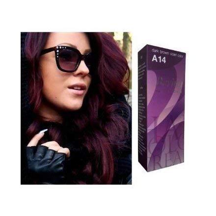 Berina Hair Professional Permanent Hair Color Cream (A 14) Dark Brown Violet Color