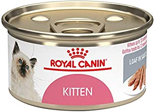 Royal Canin Feline Health Nutrition Kitten Loaf in Sauce Canned Cat Food, 3 Ounce Can (Pack of 24)