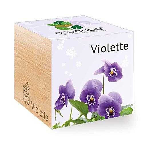 Feel Green Ecocube Violette, Idée Cadeau (100% Ecologique), Grow-Your-Own/Kit Prêt-à-Pousser, Plantes Dans Des Cubes En Bois 7.5cm, Produit En Autriche