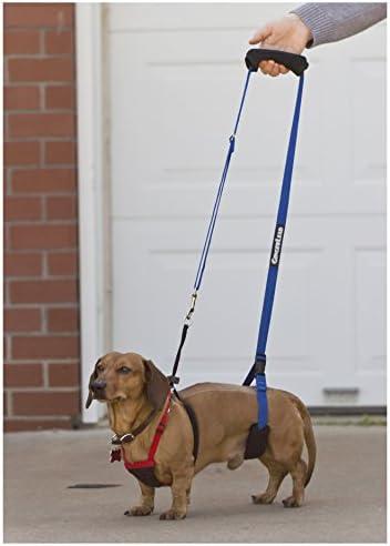 GingerLead Dog Support & Rehab Sling