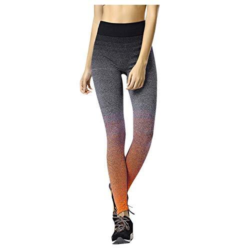 Leggings Leggings Femmes Gradient Taille Haute Legging Stretch Séchage Rapide Pantalon De Course À Pied Plus La Taille Leggins MB