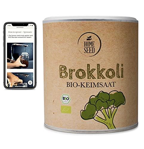 Homeseed Graines de brocoli [450 g] 100 % bio graines de germination microgreens + instructions pour tirer les pousses