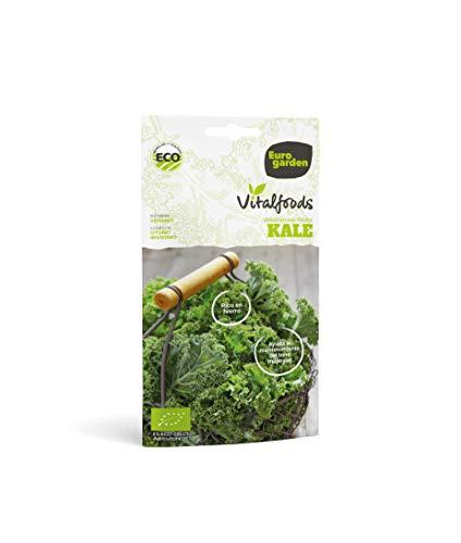 Eurogarden - Semillas Vitalfood para cultivar. Semillas sanas y naturales. (KALE WESTLANDE HERFST VITALFOODS)