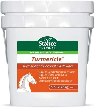 Stance Equitec Turmericle Powder for Horses with Powdered Coconut Oil Supports Normal Inflammation product image