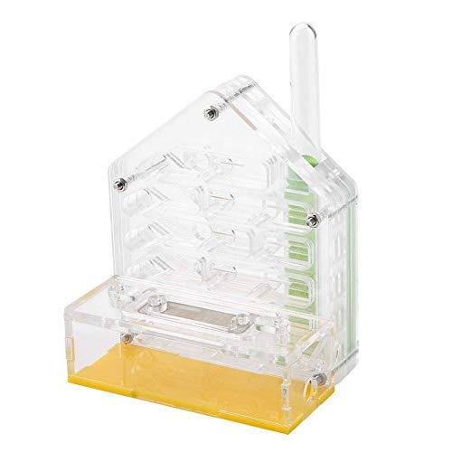 01 Transparente tragbare Bildung Spielzeug Ameisennest, Ameisenfarm, Geburtstagsgeschenk für Kinder Ameisenfütterung