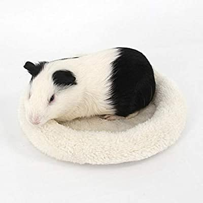 HEEPDD Hamster Bed, Soft Plush Pet Bed Winter Warm Fleece Sleep Mat Round Sleeping Cushion for Small Animals Gerbils Squirrel Hedgehog Guinea Pigs(Beige L) by HEEPDD
