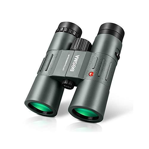 Telescopio HAOYANG Binoculares de larga distancia para adultos y niños HD 10x42 Professional con adaptador para teléfonos celulares: Adecuado para adultos Aves de observación de aves Caza, observación
