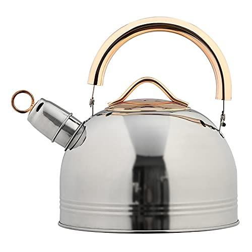 GDYJP Hervidor de calefacción de Acero Inoxidable de 3L Whistling Teakettle Anti-Scald Hervidor de hervidor de hervidor de Alimentos de Grado alimenticio para cocinas de inducción de Gas