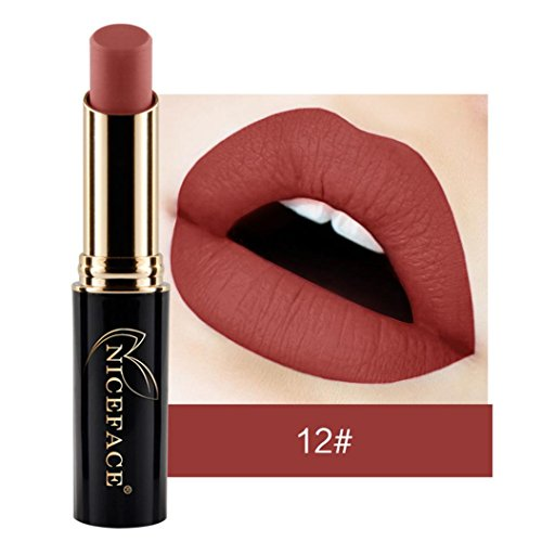 Labiales Mate Larga Duracion Pintalabios Permanente de Maquillaje Profesional 24 Colores para Niñas y Mujer por ESAILQ