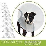 Collare Elisabetta Trasparente per cani e gatti (30 cm)