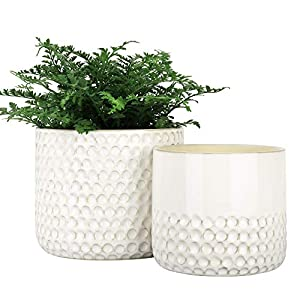 LA JOLIE MUSE Ceramic Planter Flower Plant Pots- 6.7+5.5 Inch Concave Dot Patterned Cylinder Flower Pot with Drain Hole for Indoor, Set of 2, Ivory