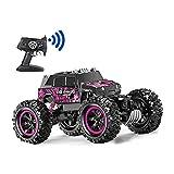 Aodatu Ferngesteuertes Auto Lila 360 ° Stunt Flip wasserdichte Monster Truck, RC Auto 1:14 4WD Offroad Junge und Mädchen Erwachsene Kinder können das Spielzeug steuern -