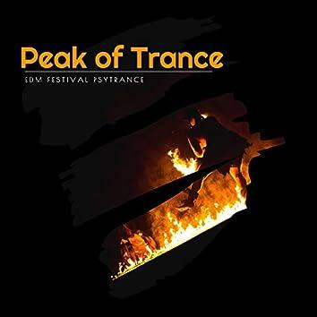 Peak Of Trance - EDM Festival Psytrance