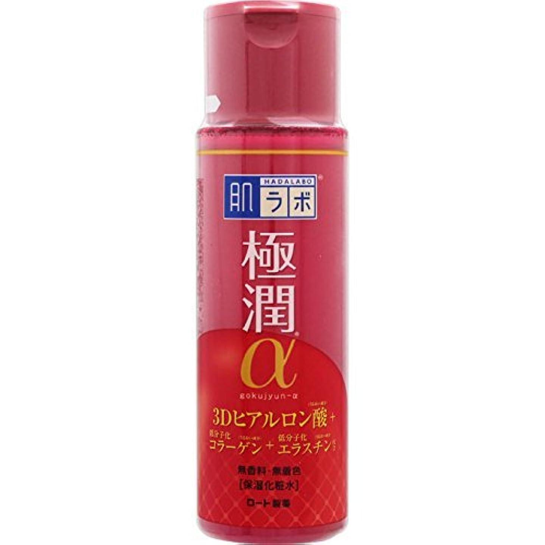 ピンクどちらか生きている肌ラボ 極潤α ハリ化粧水 3Dヒアルロン酸×低分子化コラーゲン×低分子化エラスチン配合 170ml