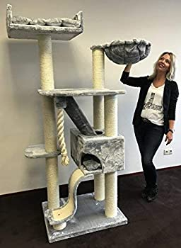 Arbre à chat géant grand chat XXL Kilimandjaro Gris clair pour gros chats Produit de qualité RHRQuality