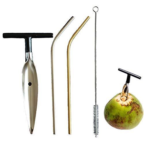 Master Srlin Coconut Opener Tool, Including 1 Coconut Knife 2 Stainless Steel Straws and 1 Cleaning...