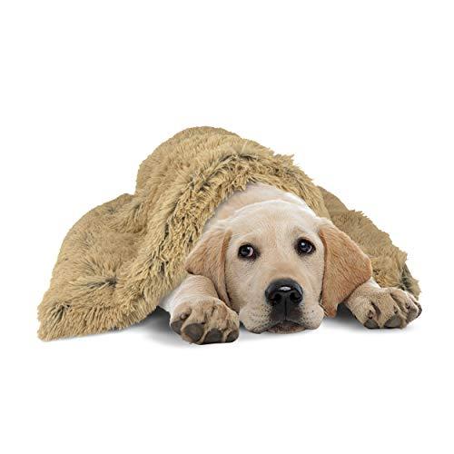 The Dog's Blanket Couverture en forme de donut pour chien Beige 72 x 107 cm