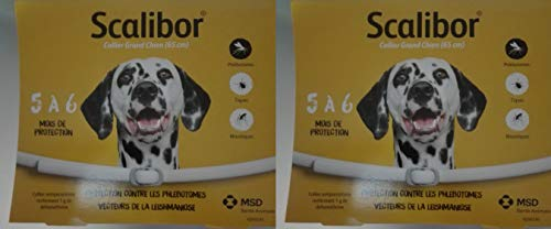 Scalibor 2 Collare (2 Boxes), 65 cm - MSD Animal Health