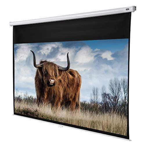 celexon manuell ausziehbare Heimkino- und Business-Beamer-Leinwand 4K und Full-HD Rollo-Leinwand Economy - 240 x 135 cm - 16:9 - Gain 1,0